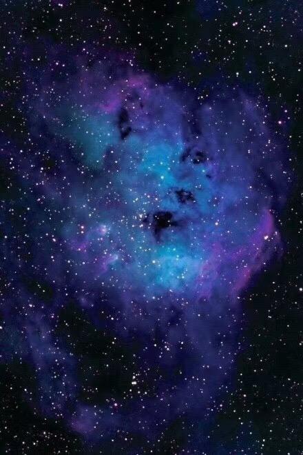【菩心-舒俱来】犹如星际蓝紫,美不胜收~-菩心晶舍