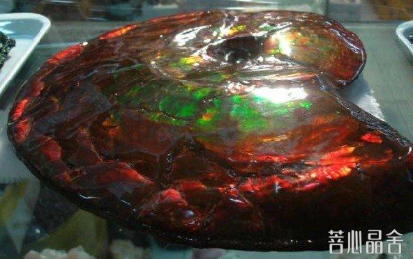 斑彩螺纹石的基本介绍