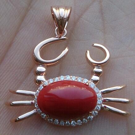 深海精灵——红珊瑚