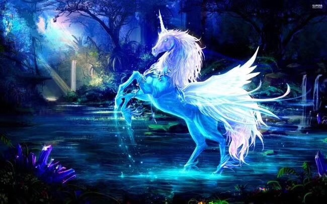 【舒俱来🦄️】独角兽是意识已扬升进化到第七次维度的存在-菩心晶舍