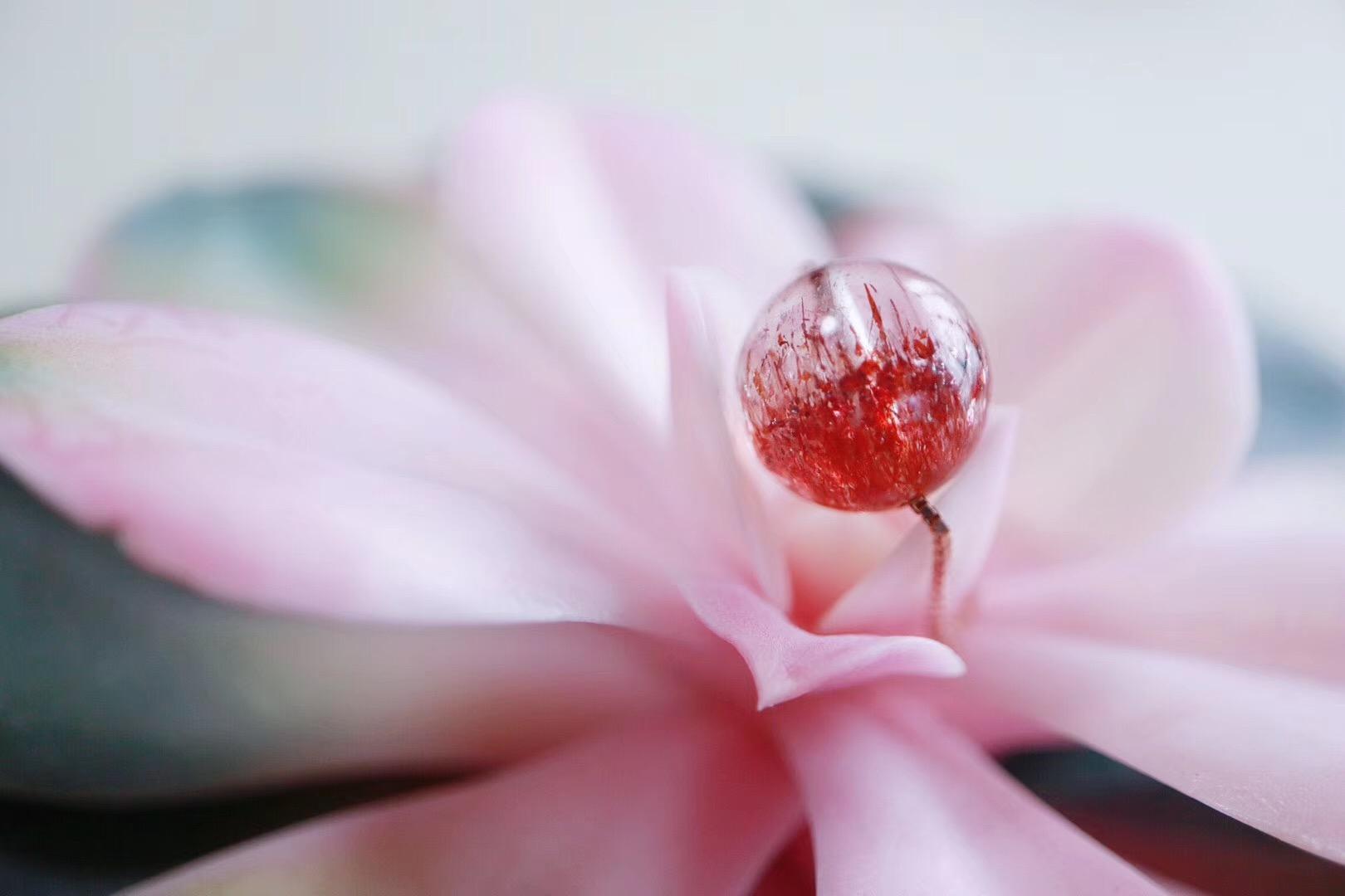 【菩心 | 超七金草莓晶聚宝盆】美化你的生活,丰富你的创造~~-菩心晶舍